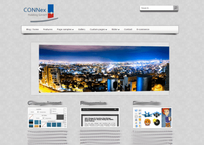 Website Connex Group